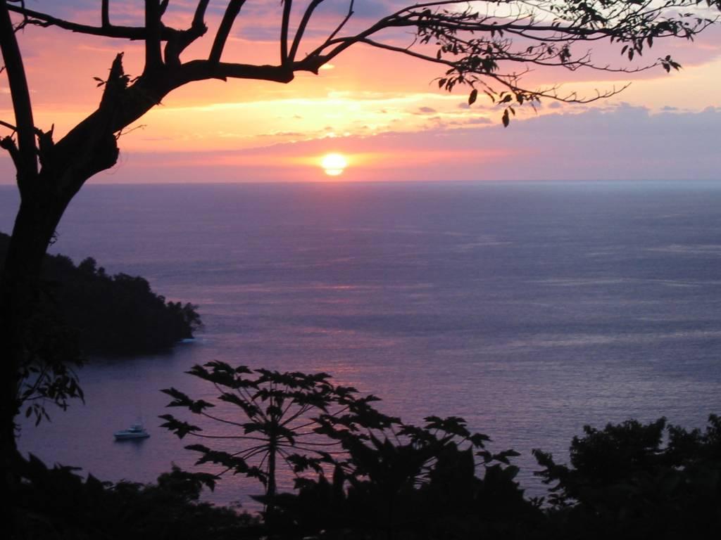 Costa Rica/Panama Fishing – Kevin Gehm's Field Journal