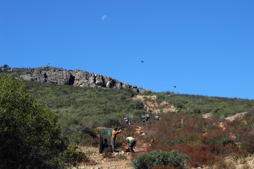 partridge shooting at El Crespo in Spain with Trek Safaris