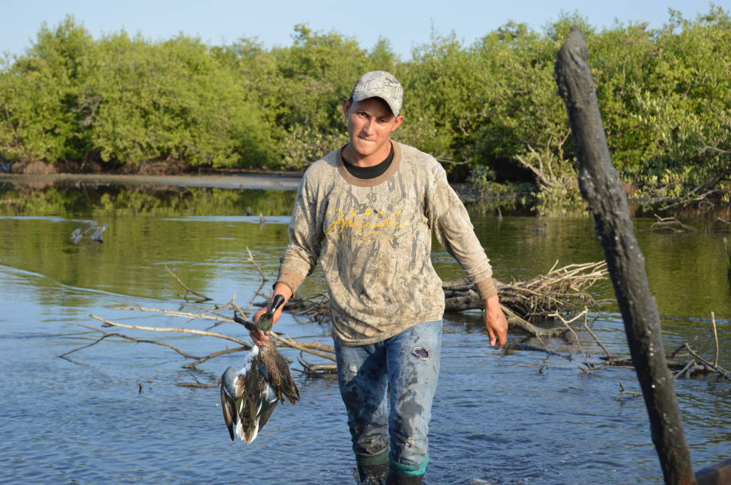 Teal and Dove shooting in Nicaragua with Trek Safaris
