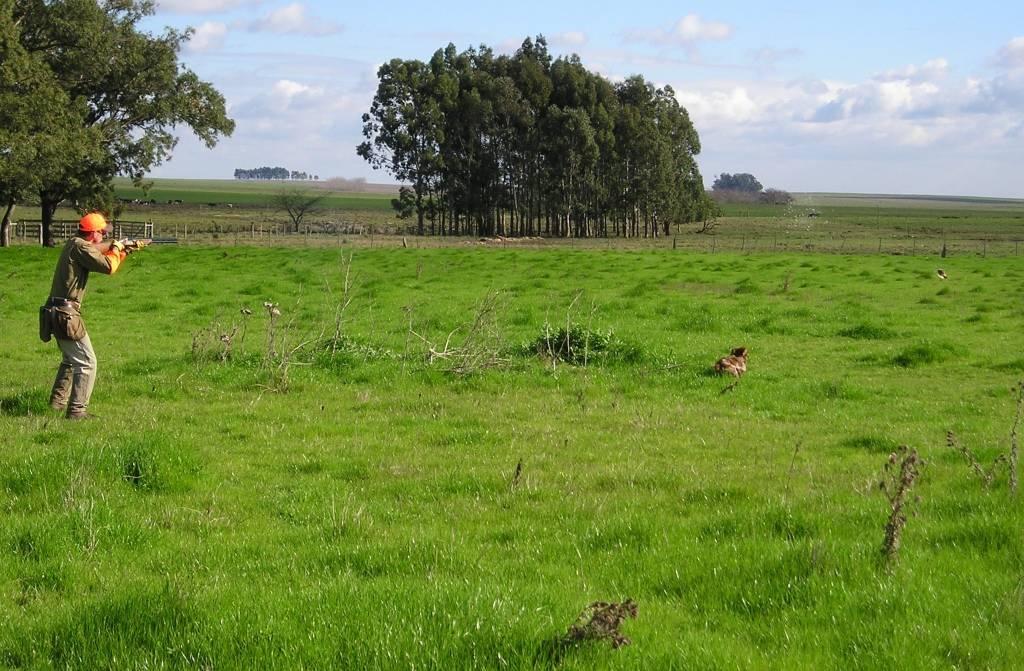 wing-shooting in Uruguay with Trek Safaris