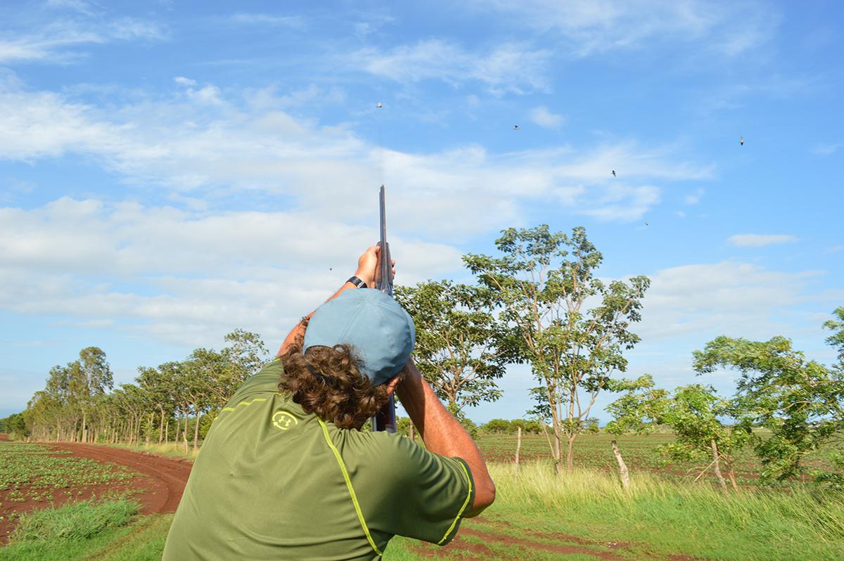 dove shooting at Mombacho Lodge in Nicaragua with Trek Safaris